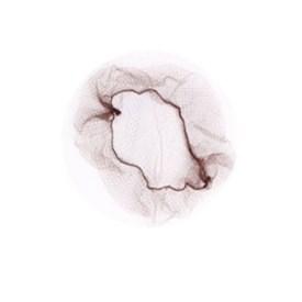 Rede Invisível Coque Só Dança com 2 Castanho